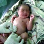 Bayi Dalam Kardus Ditemukan di Tengah Sawah