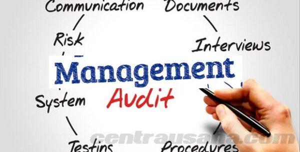 audit manajemen e1611304686518
