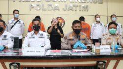 Ribuan Benih Lobster Jenis Pasir dan Mutiara berhasil Digagalkan Polda Jatim