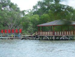 Mengubah Desa Menjadi Wisata, PHE WMO Perbaiki Kondisi Terumbu Karang