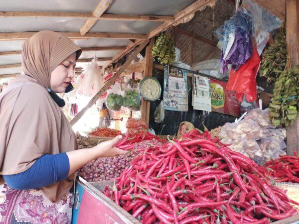Diprediksi Anjloknya Harga Cabai Rawit di Sumenep Hingga November